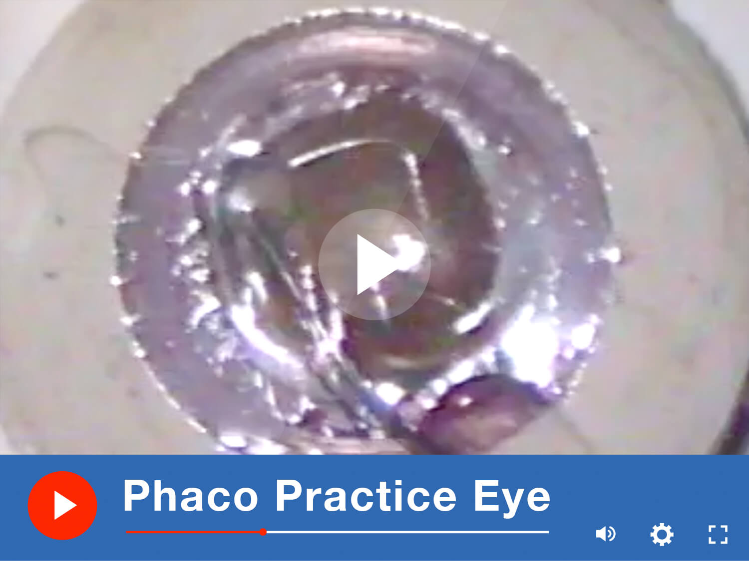 Phaco Practice Eye Video